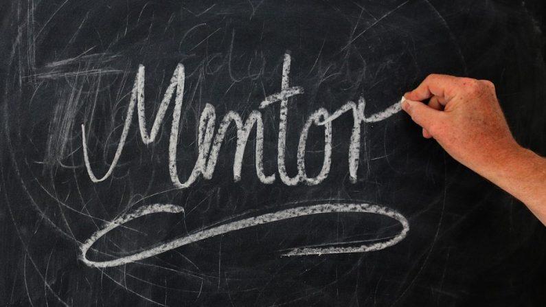 Med en mentor bliver du bedre til at fungere på en arbejdsplads som ansat eller i praktik.